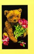 Teddy Bear Collector's Journal