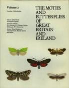 Cossidae - Heliodinidae