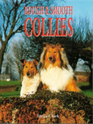 Rough and Smooth Collies