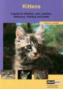 Kitten (About Pets)