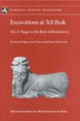 Excavations at Tell Brak