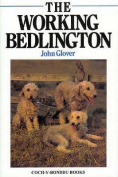 The Working Bedlington