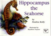 Hippocampus the Seahorse
