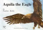 Aquila the Eagle