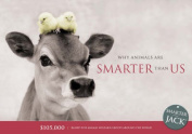 Why Animals are Smarter Than Us