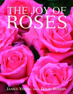 The Joy of Roses