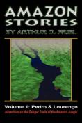 Amazon Stories