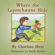 Where the Leprechauns Hide