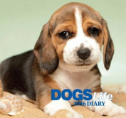 Dogs Life 2016 Diary