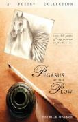 Pegasus at the Plow