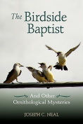 The Birdside Baptist
