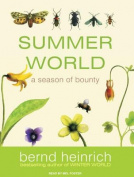 Summer World [Audio]