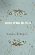 Birds of the Rockies
