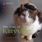 Cats of Kittyville