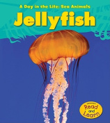 Jellyfish (Day in the Life