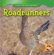 Roadrunners (Animals That Live in the Desert