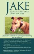 Jake Adventures of a Greyhound