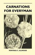 Carnations for Everyman