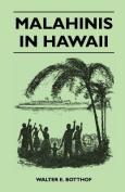 Malahinis in Hawaii
