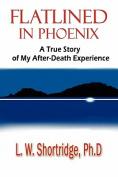 Flatlined in Phoenix