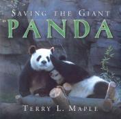 Saving the Giant Panda