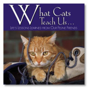 What Cats Teach Us...