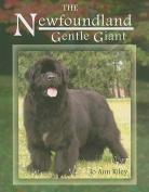 The Newfoundland: Gentle Giant