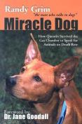 Miracle Dog