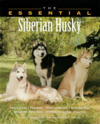 The Essential Siberian Husky