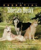 The Essential Siberian Husky