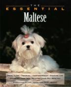 The Essential Maltese