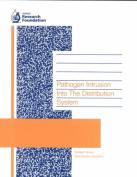 Pathogen Intrusion into the Distribution System