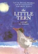 The Little Tern