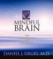 The Mindful Brain [Audio]