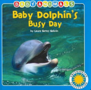 Baby Dolphin's Busy Day (Smithsonian Baby Animals) [Board book]