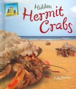 Hidden Hermit Crabs