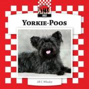 Yorkie-Poos