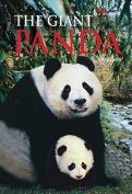 The Giant Panda