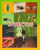 Insectos (Coleccion Facil de Leer