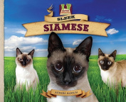 Sleek Siamese