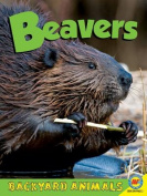Beavers (Backyard Animals)