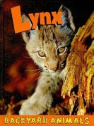Lynx (Backyard Animals)
