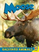 Moose (Backyard Animals)