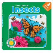 First Look at Insects [Board Book]