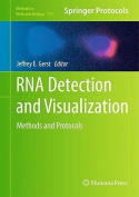 RNA Detection and Visualization