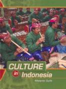 Indonesia (Culture in... S.)