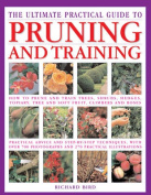 The Ultimate Practical Guide to Pruning & Training