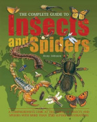 The Complete Guide to Insects and Spiders