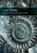 Irish Fossils