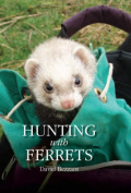 Hunting with Ferrets